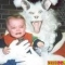 funny-pictures-evil-easter-bunny-16p.jpg