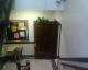 My hanging plant