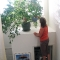 Watering the ficus