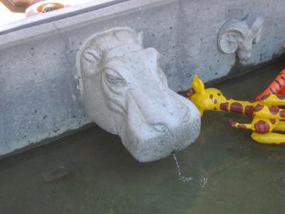 Lovely Hippo