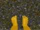 Artpad feet