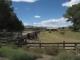 Cool old timey farm