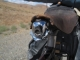 My busted saddle