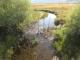 A creek in Bridgeport