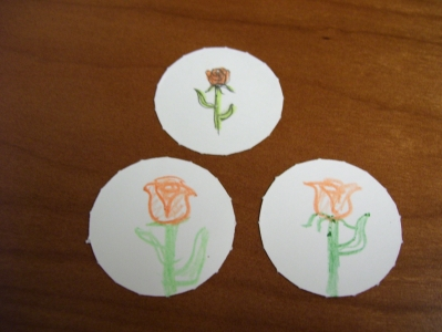 Three orange roses.