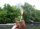 In place of a true Viking funeral, we lit a sparkler in The Gondor