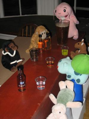 The Monkey Bar!