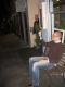 November 2007 077.jpg
