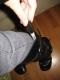 November 2007 134.jpg