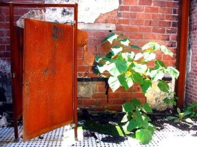 thistle mill bathroom, aug 05