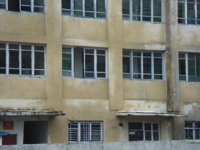 children in the windows