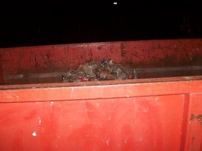 Inner Dumpster