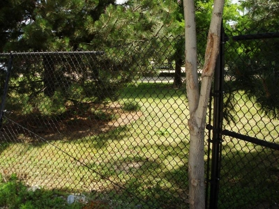 A fence?