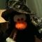 Penguin wearing Camo Hat