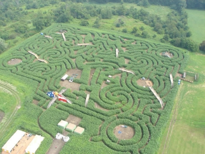 This year's maze