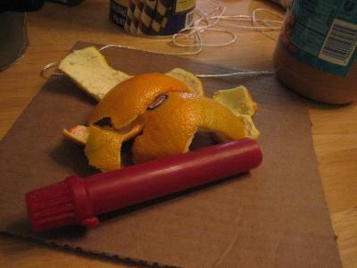 orange-not-wasted.jpg