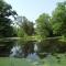 pond 001.jpg