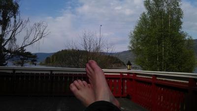 Pre hammock