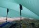 Tarp and hiking poles