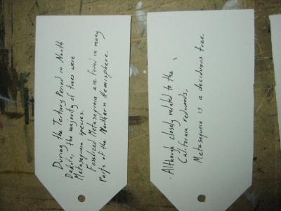 cards1&2.JPG