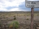 the California desert wants dogs to experience freedom