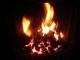 Flea's Fire