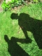 star5 - shadows