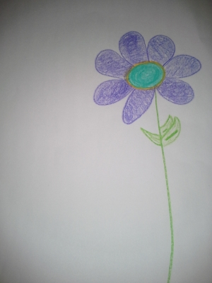 David-flower.jpg