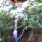 hhblurrylamp.jpg