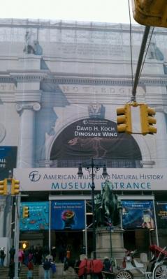 Museum Facade Facade